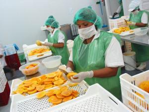 Exportaciones de alimentos de Piura crecieron 39.9% entre enero y julio del presente año
