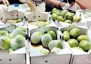 Exportaciones de chirimoyas y guanábanas de este año ya superan registros de todo el 2017