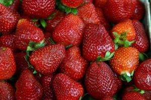 Exportaciones de fresas superan los US$ 36 millones