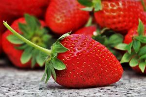 Exportaciones de fresas ya superan los US$ 15 millones