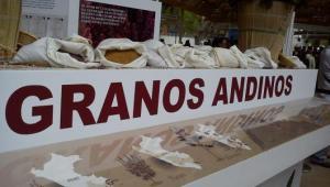 Exportaciones de granos andinos crecerían 8% este año