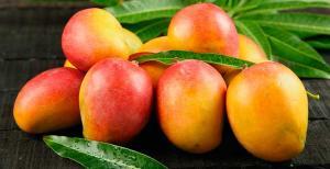 Exportaciones de jugo de mango llegaron a valores de US$ 841 mil en los primeros cinco meses del año
