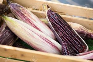 Exportaciones de maíz morado llegaron a US$ 221 mil durante los primeros cuatro meses del año