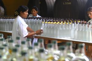 Exportaciones de pisco se incrementaron en 50% en primer trimestre del año