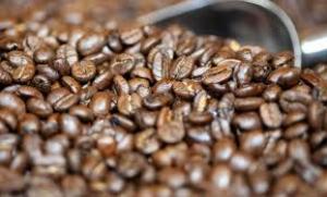 Exportaciones de productos agrícolas tradicionales cayeron casi 50% en marzo