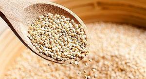 Exportaciones de quinua sumaron US$ 15.9 millones en el primer bimestre de 2020