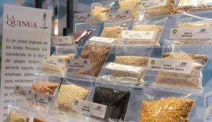 Exportaciones de quinua superan los US$ 15 millones durante el primer bimestre del año