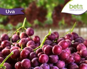 Exportaciones de uva por parte de Beta disminuirían 23.5% en la campaña 2017/2018