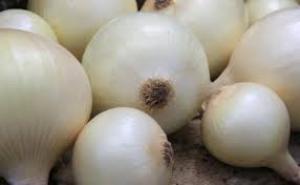 Exportaciones peruanas de cebolla dulce aumentaron 5% durante la campaña 2019/2020