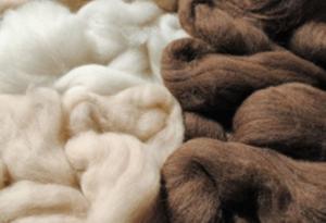 Exportaciones peruanas de productos de alpaca crecieron 48.8% en el primer semestre del año
