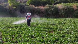 FAO: Un tercio de los suelos del planeta están de moderado a altamente degradados