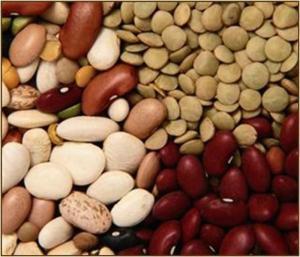 Frijol, haba y arveja representan el 77% de la producción de legumbres en nuestro país
