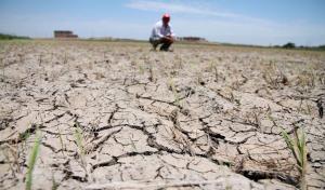 Gobierno declara estado de emergencia por déficit hídrico en 6 departamentos y 181 distritos del norte peruano