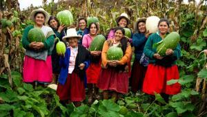 Gobierno publicó ley que impulsará la asociatividad y el cooperativismo