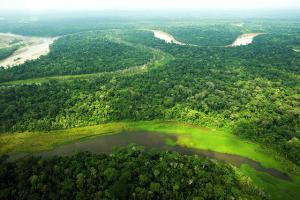 Gobiernos regionales amazónicos avanzan en su proceso de zonificación forestal