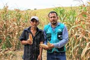 GORE San Martín tiene altas expectativas por ejecución de proyecto que beneficiará a cadena maicera de la región