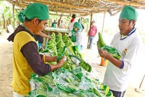Gremios agrarios recibirán cofinanciamiento de Agroideas para mejora de capacidades