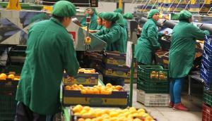 Hay preocupación en el mundo del agro por incertidumbre sobre vigencia de la Ley de Promoción Agraria