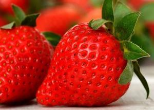 Importante incremento en exportación de fresas peruanas: suman US$ 19 millones hasta agosto de 2021