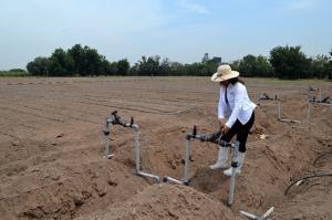 INIA anunció proyecto que mejorará calidad de agua para riego de cultivos