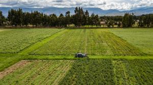 INIA presenta Estudio Prospectivo de la Innovación Agraria al 2050 con el objetivo de convertir la agricultura peruana en potencia líder