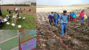 INNOVACIONES EN EL AGRO: CLAVES PARA EL DESARROLLO DE LARGO PLAZO
