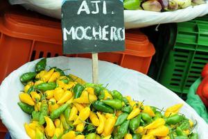 Instalan grupo impulsor de denominación de origen del Ají Mochero
