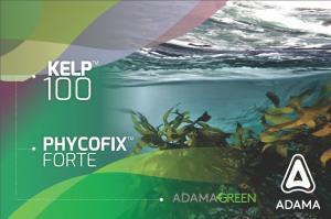 """""""Kelp 100™"""" y """"PhycoFix Forte™"""", bioestimulantes naturales que aumentan la productividad y calidad de los cultivos"""