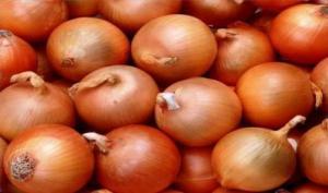 La cebolla cotizó mejor en el mercado local