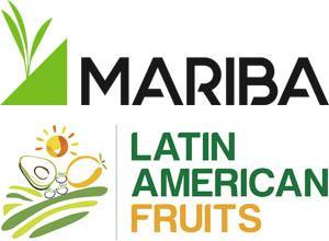 Latin American Fruits apunta a Holanda y España el próximo año