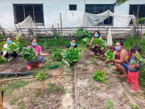 Loreto: madres combaten la anemia con biohuertos mejorados en Tambo Santa Ana