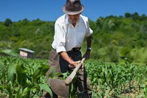 Mañana se realiza el foro sobre buenas prácticas agrícolas para el desarrollo de la agricultura sostenible