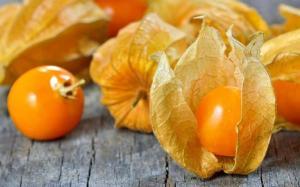Mango y aguaymanto son los productos con potencial exportador de Áncash