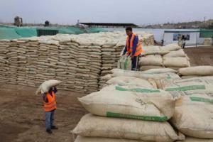 MEF aprueba precios de referencia para importación de maíz, azúcar, arroz y leche