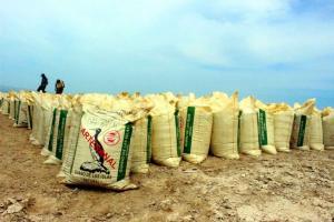 Minagri distribuye 920 toneladas de guano de islas para impulsar cultivo de café y cacao