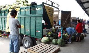 Minagri evalúa asumir flete de camiones que transportan alimentos
