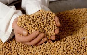 Ministro Mostajo anunció creación de autoridad de semillas y reorganización del Minagri