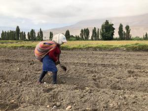 Mujer rural, el futuro del agro