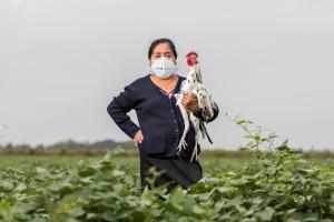 Mujeres dirigirán Núcleo Ejecutor para limpieza y mantenimiento de canales en Lambayeque