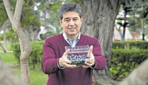 Norteamericana Fall Creek exportará plantas de arándanos a Colombia y China desde Perú