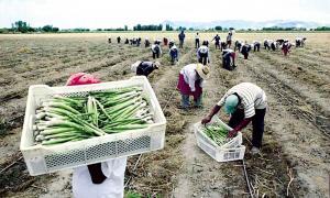 """""""Nueva ley agraria debe ser respetuosa de la constitución, competitiva y que se ajuste a los grandes cambios tecnológicos que están sucediendo en el mundo y que incluyen aspectos laborales y tributarios"""""""
