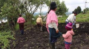 Nueve de cada diez hogares rurales han reducido la cantidad y calidad de sus alimentos durante la pandemia