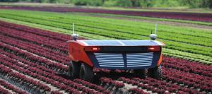 Para el 2030 los campos serán trabajados por máquinas robotizadas en un 90%