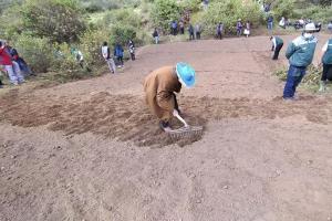 Pasco: 4.230 familias rurales mejorarán productividad ganadera