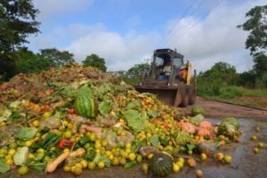 Perdidas y desperdicios de alimentos: hacer más eficientes los procesos a lo largo de las cadenas de valor