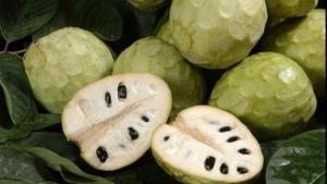 Perú debe producir chirimoyas con piel más gruesa para que aumenten las exportaciones