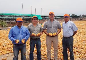 Perú: Desde una Agricultura de subsistencia hasta una Agricultura de Exportación