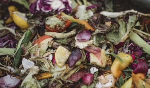 Perú desperdicia 12.8 millones de toneladas de alimentos cada año