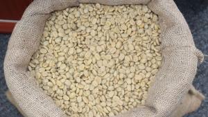Perú es el principal proveedor de café orgánico a Estados Unidos