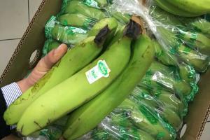Perú es el quinto exportador de productos orgánicos a Europa